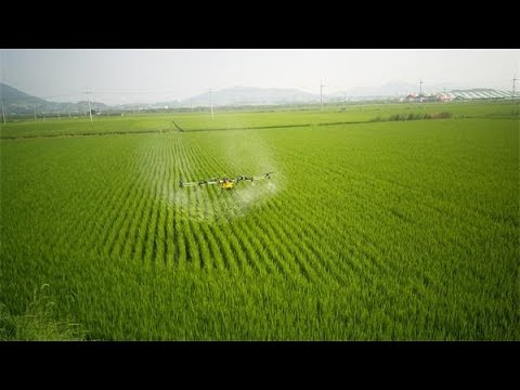Actual Spraying Video of Drone