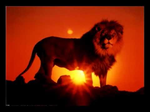 Rebelution - Heart like a lion (HQ and lyrics)