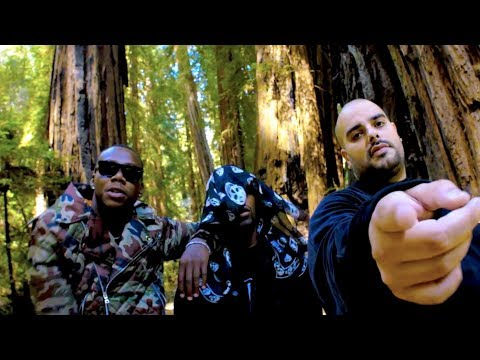 Fidel Cash  Mo Money feat. Berner & Symba  Video