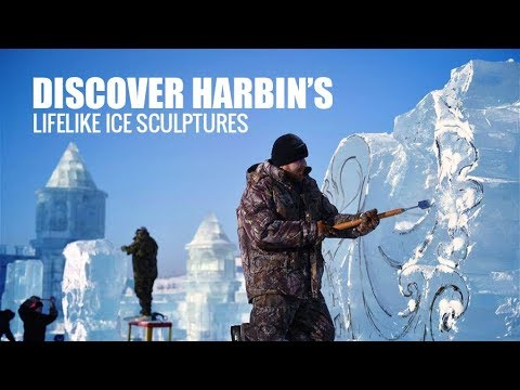Live: Discover Harbin's lifelike ice sculptures 探秘中国·哈尔滨国际冰雕比赛