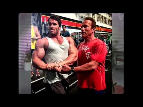 Los bíceps de Arnold Schwarzenegger | Alpes Austríacos