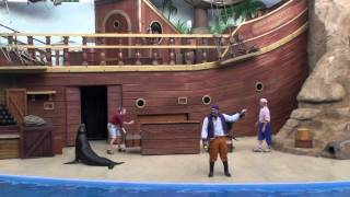 Clyde and Seamore Take Pirate Island FULL SHOW - Sea World Orlando