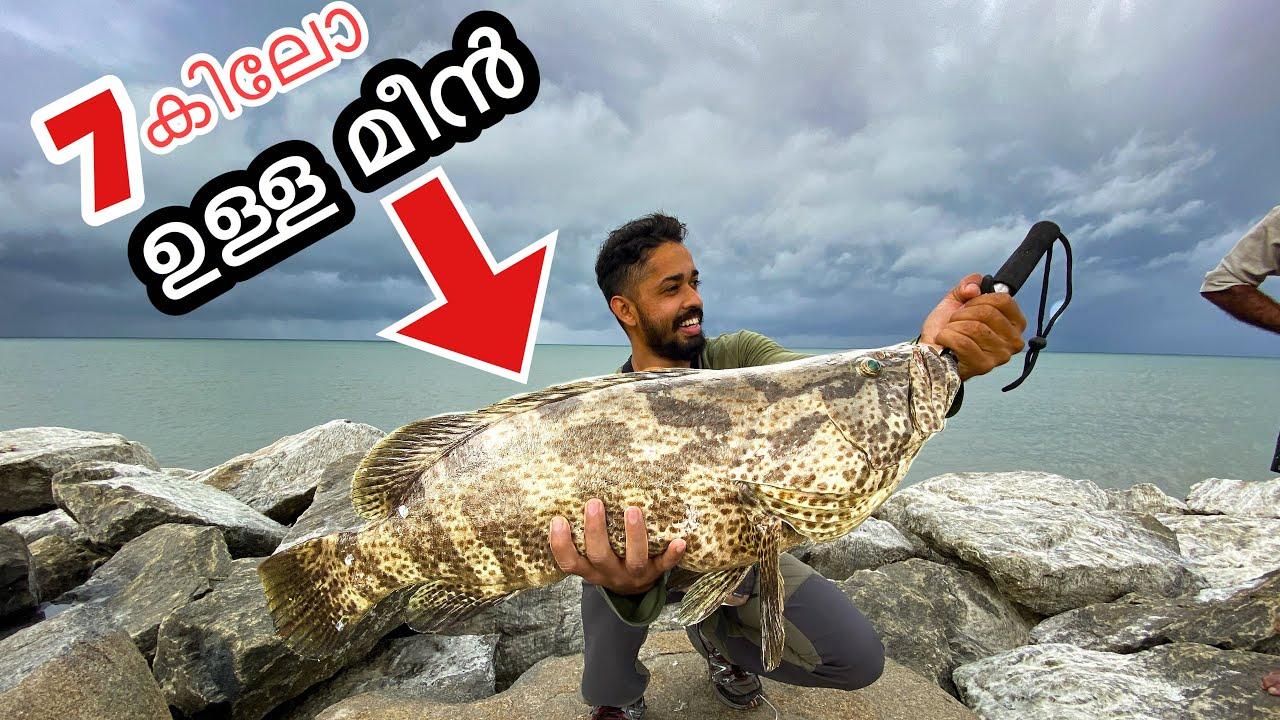 ചൂണ്ടയിൽ പിടിച്ച ഈ മീനിനെ മുഴുവനെ വറുത്താലോ?? | Catch and Cook Huge Fish from sea