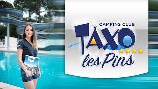 Taxo Les Pins 2016