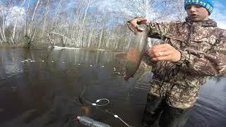 Рыбалка Сетями Уронили камеру Хороший улов