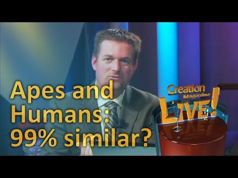 Apes and Humans: 99% similar? -- Creation Magazine LIVE! (2-23)