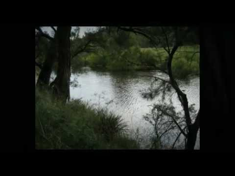 eco property for sale NSW - land for sale NSW