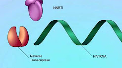 Mechanisms of Action of Non-Nucleoside Reverse Transcriptase Inhibitors (NNRTIs)