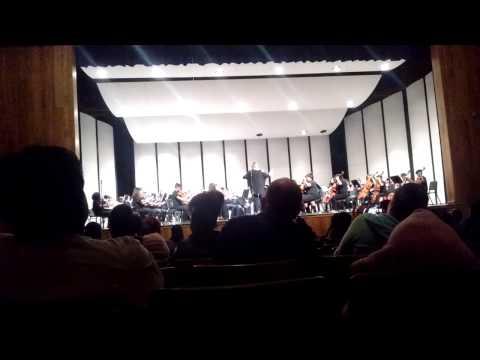 Gililland middle school orchestra 2 015
