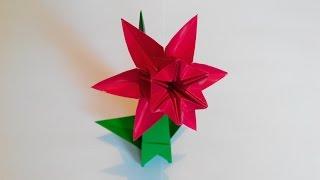 Нарцисс оригами 6 лепестков, Narcissus origami, 6 petals (František Grebeníček)