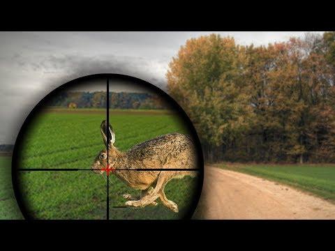 Топ 100 ЭПИЧЕСКИЕ моменты ОХОТА НА ЗАЙЦА \ BEST HUNTING KILL SHOTS