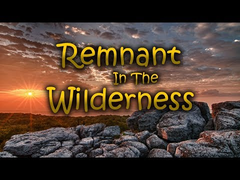 Repair The Breach, Today Is The Day: Remnant In The Wilderne