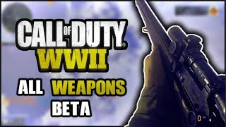 Call Of Duty WW2 (BETA) - ALL WEAPONS SHOWCASE