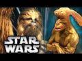 RIPPED JAR JAR BINKS   Star Wars Costume Exhibit