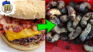 8 Disturbing Things You Didn't Know About Fast Food