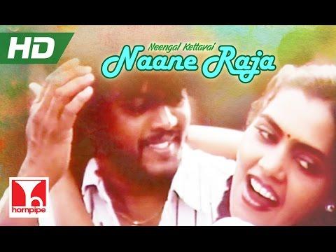 Naane Raja | ILAIYARAJA SONGS | NEENGAL KETTAVAI  | Full HD | Thiagarajan,Silk Smitha