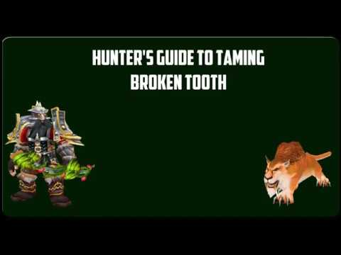 How To Tame Broken Tooth Classic Wow S Bis Hunter Pet Useful Addon Youtube