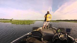 Powell Max 7105 C MH 5# Bass Boat Flip