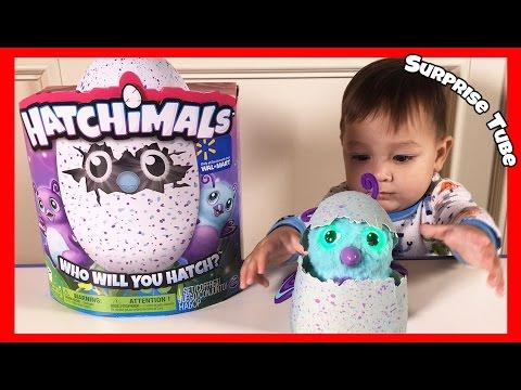 Hatchimals Video 2 30seg Doovi