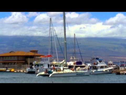 Maalaea Harbor, Maui, Hawaii