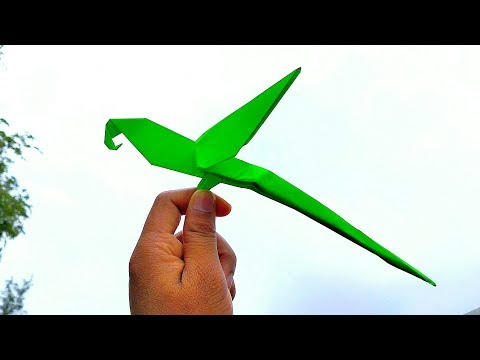 How to Make Paper Parrot    Origami Parrot    DIY