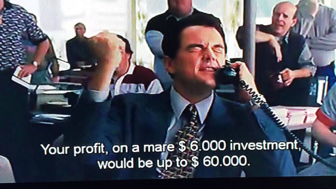 Wolf Of Wall Street Quotes Wallpaper Wolf Of Wall Street The Phone Script That Made Millions