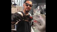 Shark Puppet gets a tattoo