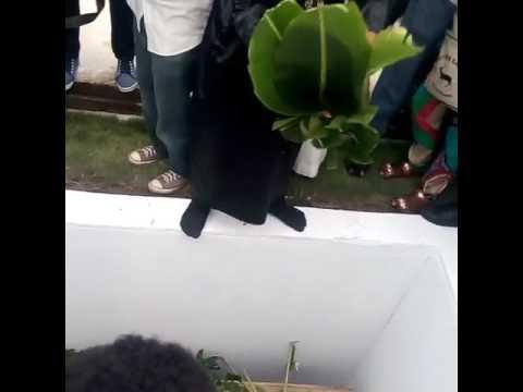 Tears As Late Nollywood Thespian, Moji Olaiya Buried (Watch Video)