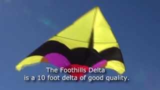 Foothills Delta Kite in Coalinga Foothills Thumbnail