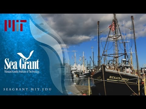 Celebrating America's Largest Commercial Fishing Port Community -  Keeping maritime traditions alive