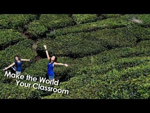 Study Abroad Experience at Monash University Malaysia