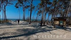 Ostsee und Darß / Halbinsel Fischland - Darß - Zingst / Darßerort und Weststrand / Balticsea