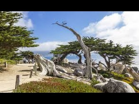 Summer Road Trip 2014 - day 13 & 14  Pacific Highway 1 & 17 Mile Drive
