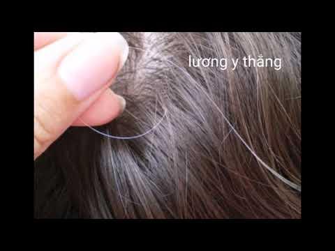 9 cách trị tóc bạc sớm tại nhà hiệu quả nhất