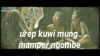 Gambar cover Story wa pitutur jowo status wa Jawa
