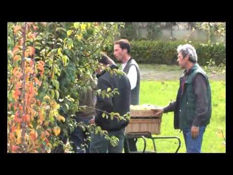 Le potager du roi s 39 engage youtube - Le potager du roi ...