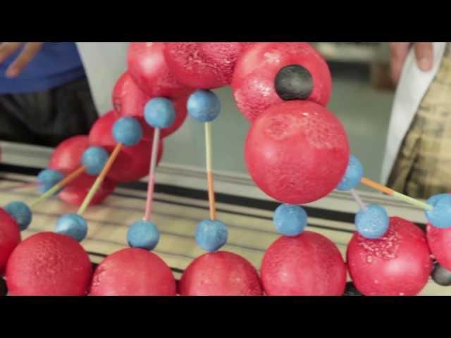 Explora la ciencia (1/8). Líquidos que no son líquidos.