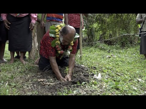 Fijian Minister For Forestry Launches The One Man One Tree One