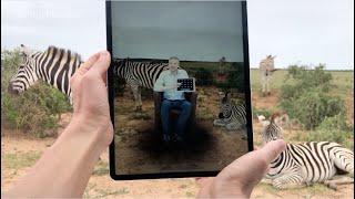 Virtual Shows Around The World