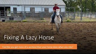 Fixing A Lazy Horse
