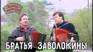 Играй, гармонь!   Братья Заволокины   Сормовска больша дорога...
