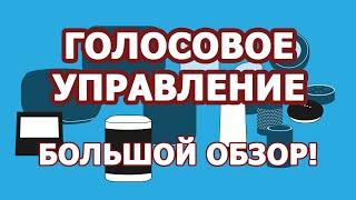 Голосовое управление Умным домом MajorDoMo: обзор систем (Яндекс.Станция, Amazon Alexa, Google Home)