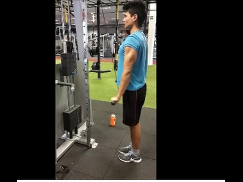 how to get your biceps bigger