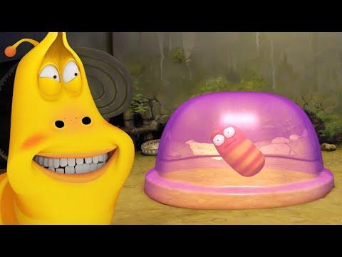 Larva | ゼリータイム | 子供のための漫画 | 子供向けの漫画 | WildBrain