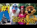 DISNEYLAND PARIS VLOG | Disneyland Park | Día 1 Parte 1 c/SeteTesela