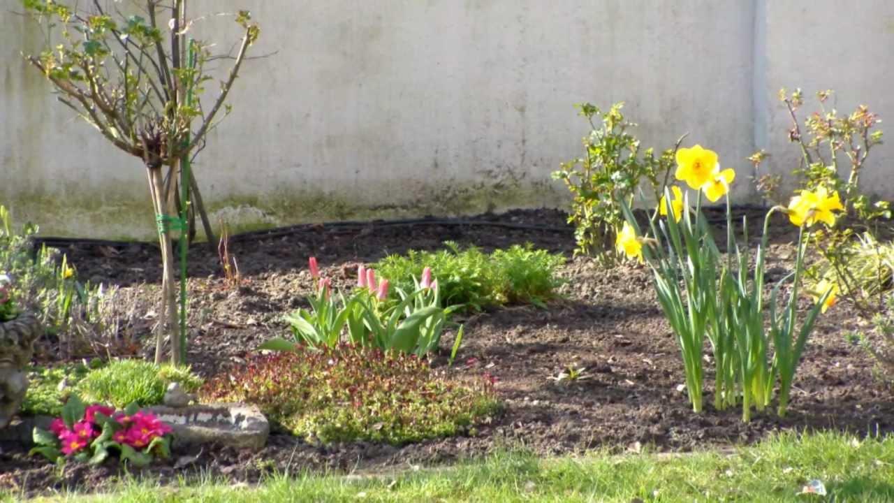 Fruhlingsblumen Im Garten 28 Marz 2011 Teil 2