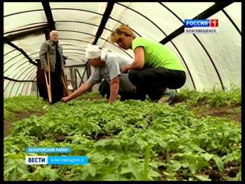 Белогорский плодопитомник добивается возврата отобранных земель