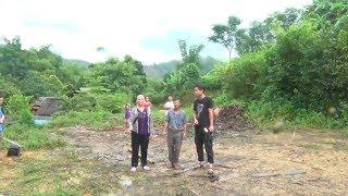 Bắc Kạn thành lập tổ công tác xử lý vụ việc đất lâm trường ở Ngân Sơn