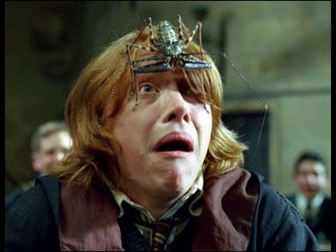 Image result for Ron Weasley sidekick