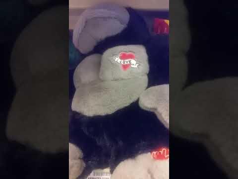 Singing Valentines Day Gorilla